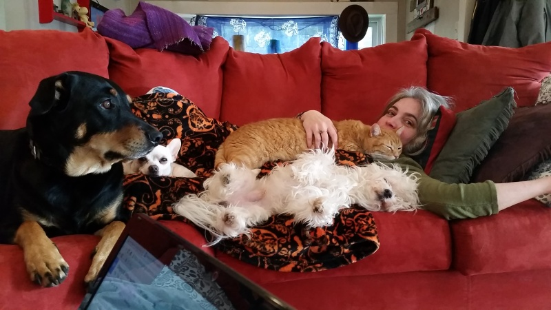 Around the house with pets